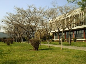 pic of aristotle univ