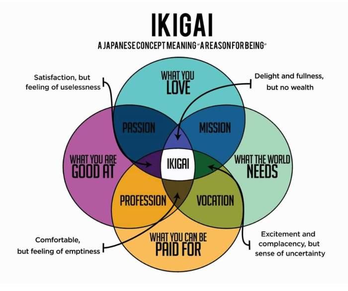 ikigai image