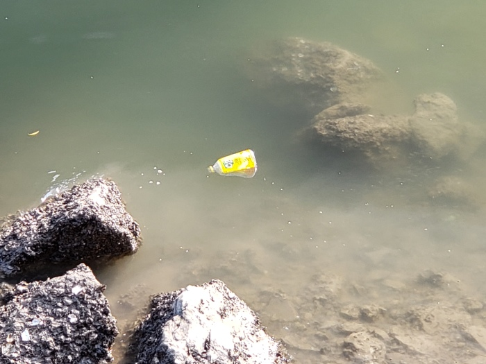 plastic bottle in ha long bay